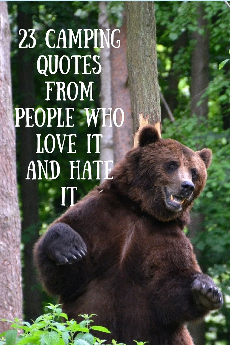 Love Animal Quotes 23 Camping Quotes From People Who Love It And Hate It  203Challenges