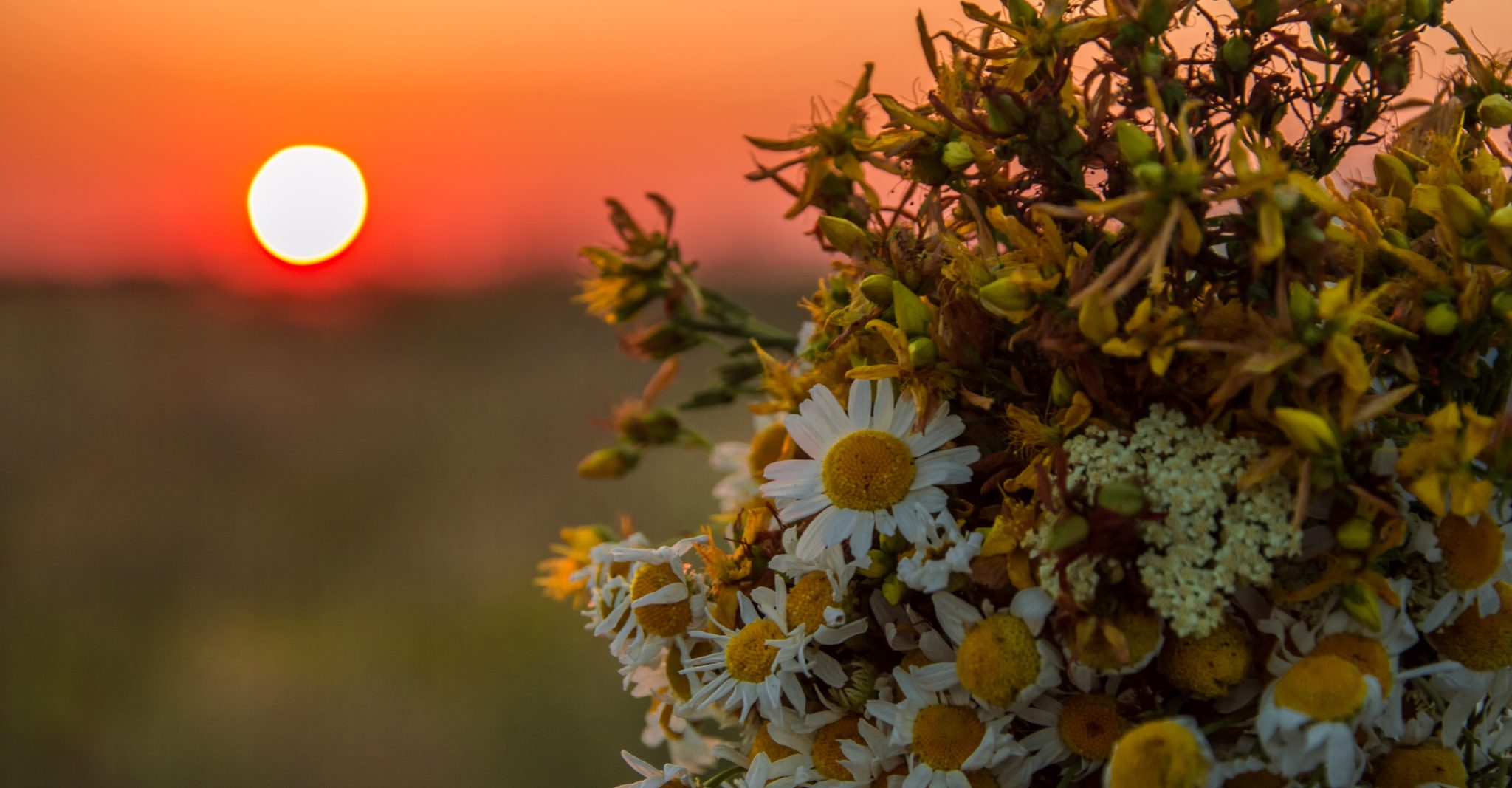 8 Unusual And Fun Summer Solstice Activities Ideas 203challenges