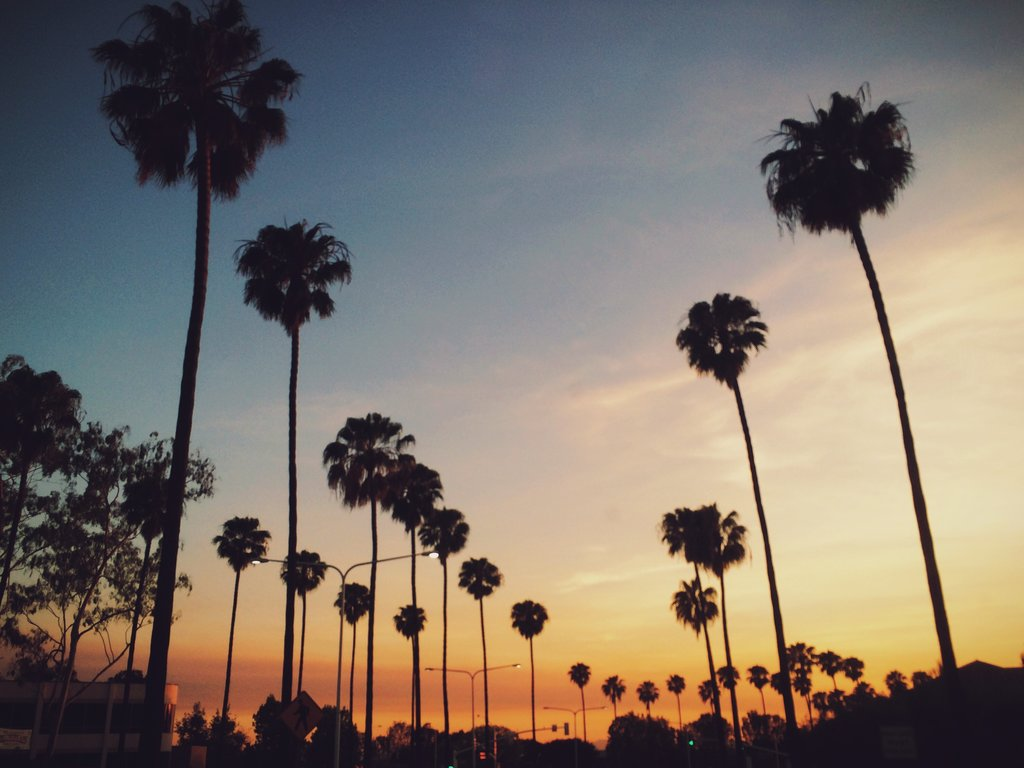 12 quotes about Los Angeles that explain why people love it
