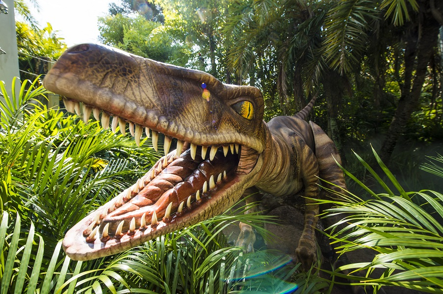 7 unusual activities at Orlando's theme parks