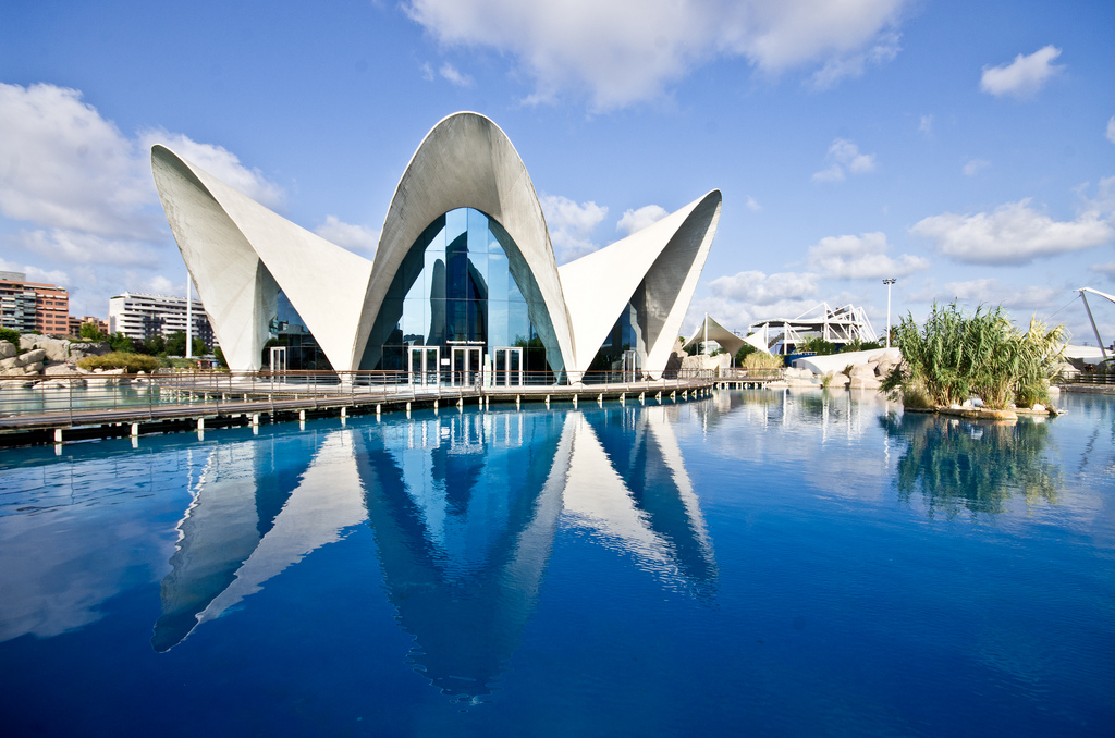 5 fun things to do in Valencia, Spain
