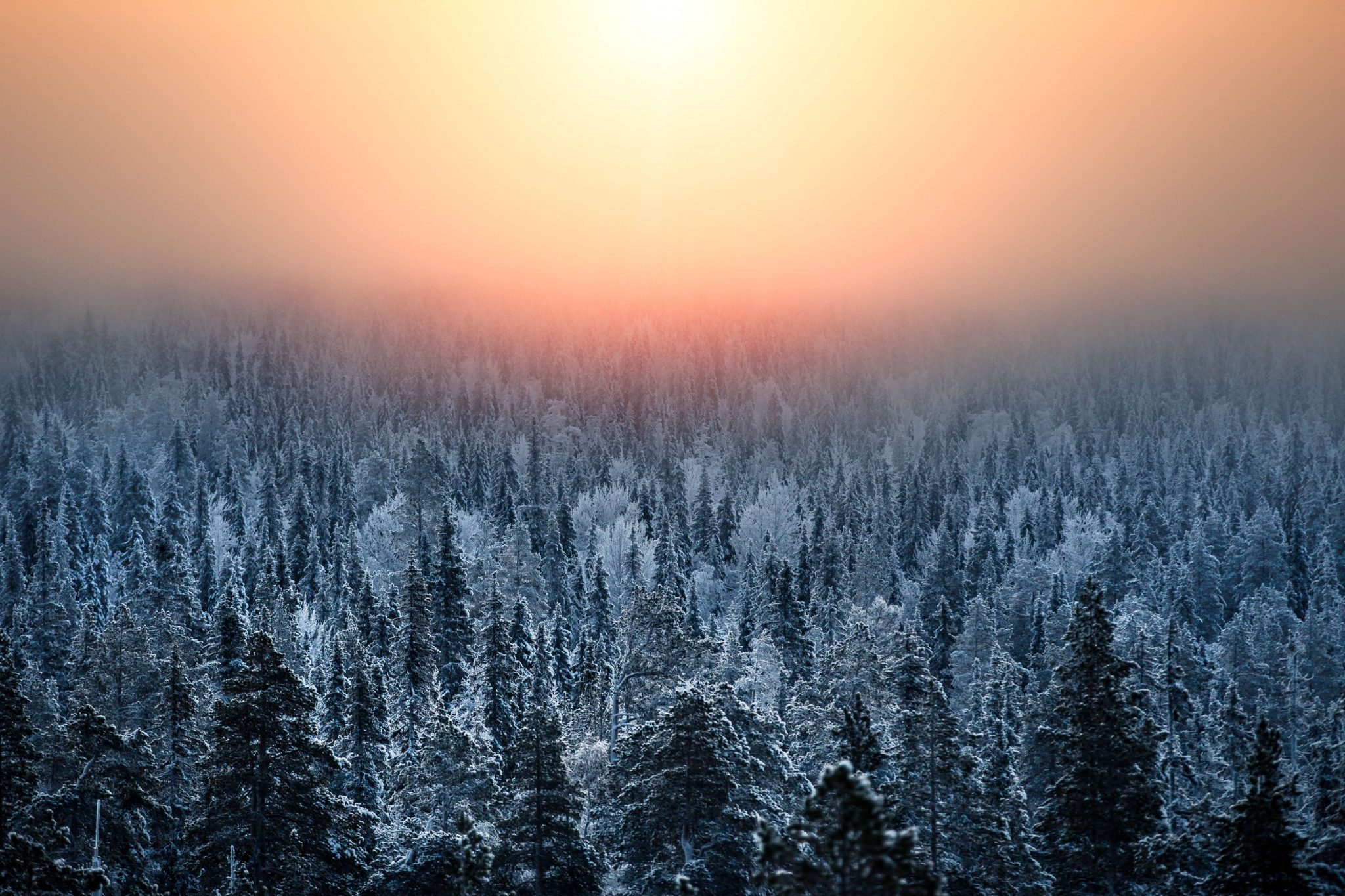 Explore Finland: 7 Fun Travel Challenges
